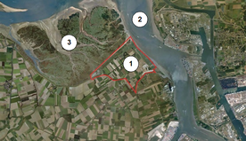 Aerial view of the project area and surroundings