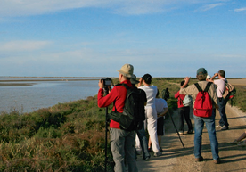 Nature observation excursionists