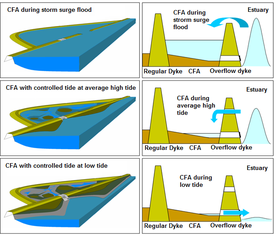 The functioning of a CFA with a controlled tidal area