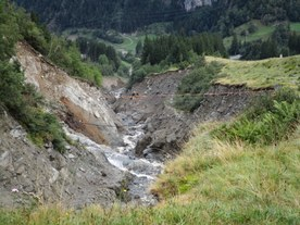 Active natural hazard processes in the Grimsel area