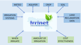 Input and output of the IRRINET system