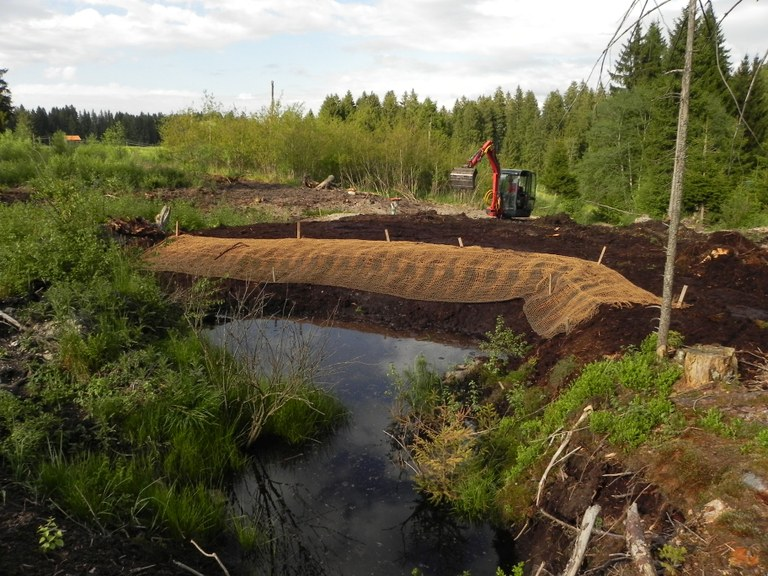 Dam construction in the Seemoos bog
